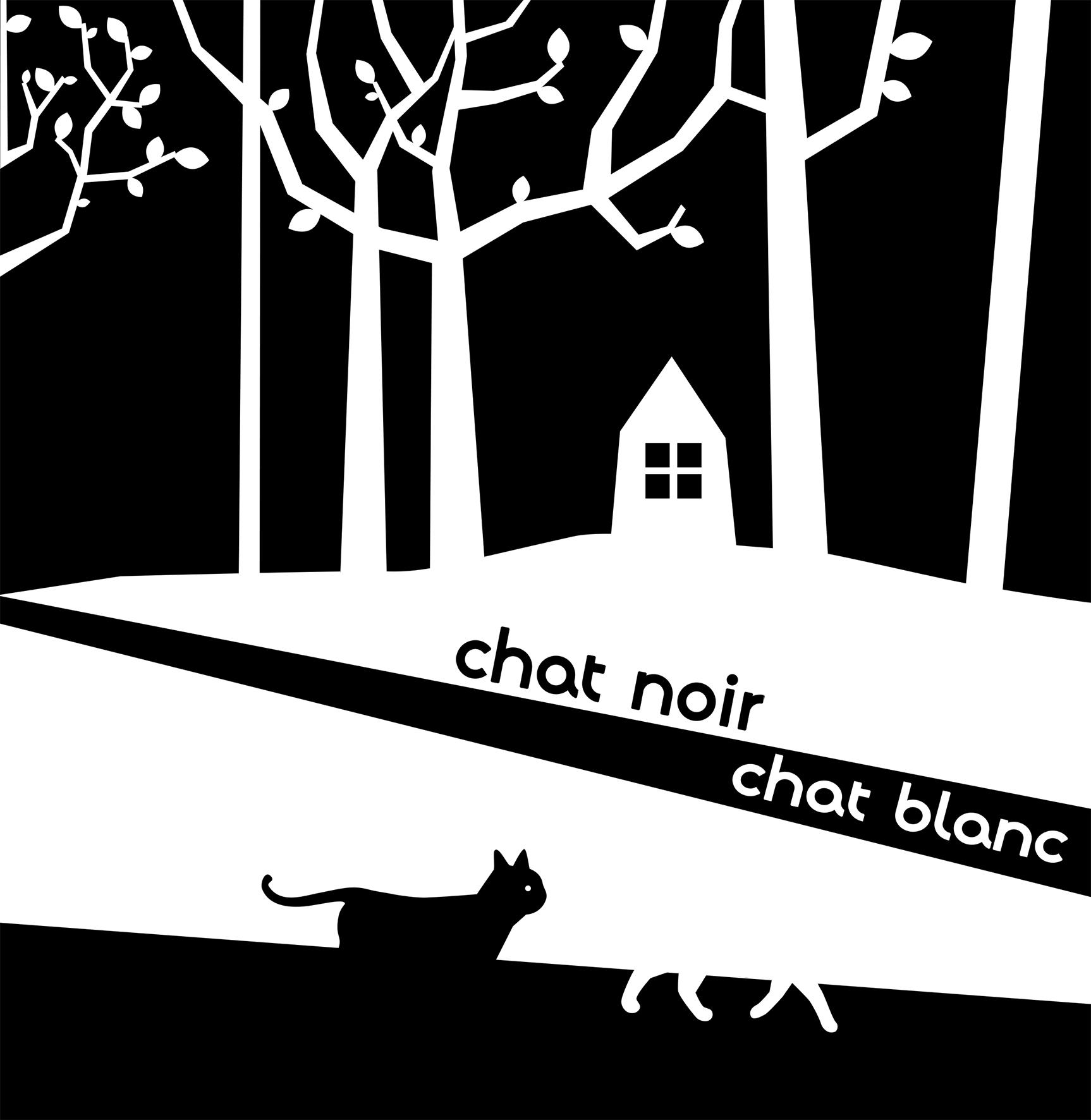 19 10 16 chatnoirchatblanc