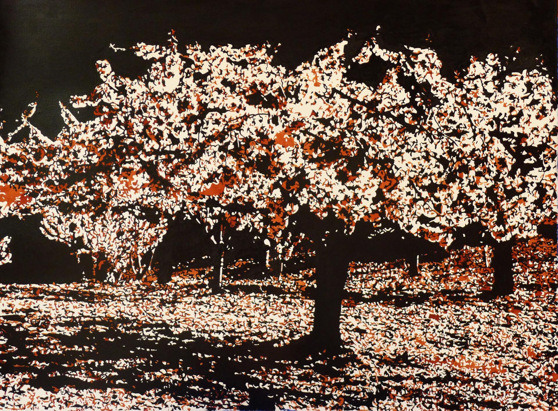 Cerisier 29 003 lumi